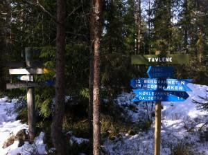 """Tavlene, tett opptil """"treriksrøysa"""" der Eidsberg, Marker og Høland møtes."""